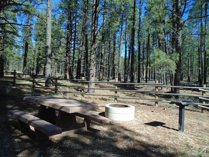 Campsite # 24
