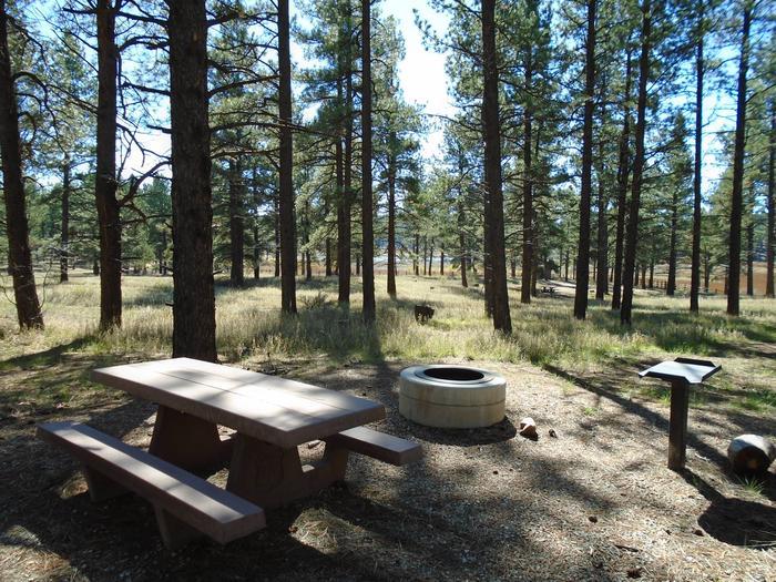 Campsite # 28