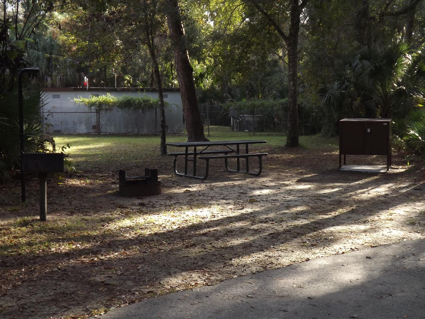Juniper Springs Recreation Area site #13 tropical setting with picnic area and camping space.
