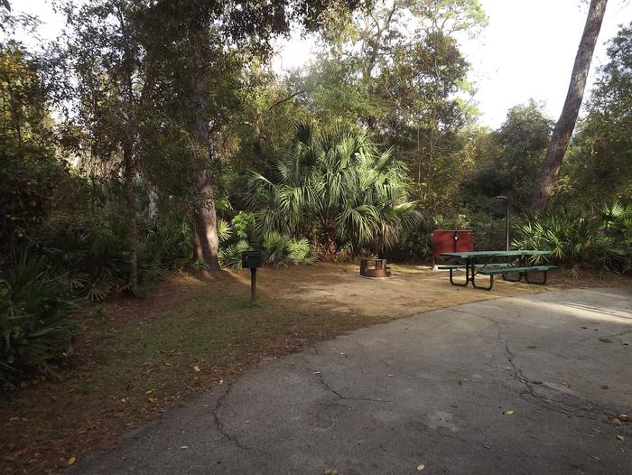 Juniper Springs Recreation Area site #15 tropical setting with picnic area and camping space.