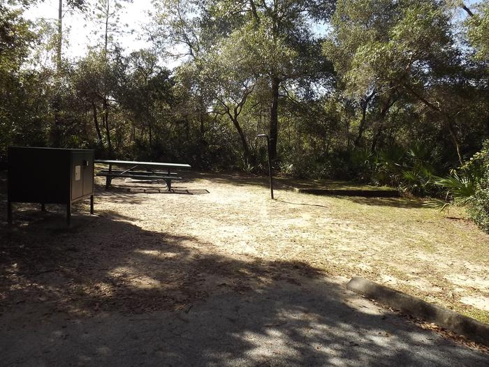 Juniper Springs Recreation Area site #38 tropical setting with picnic area and camping space.
