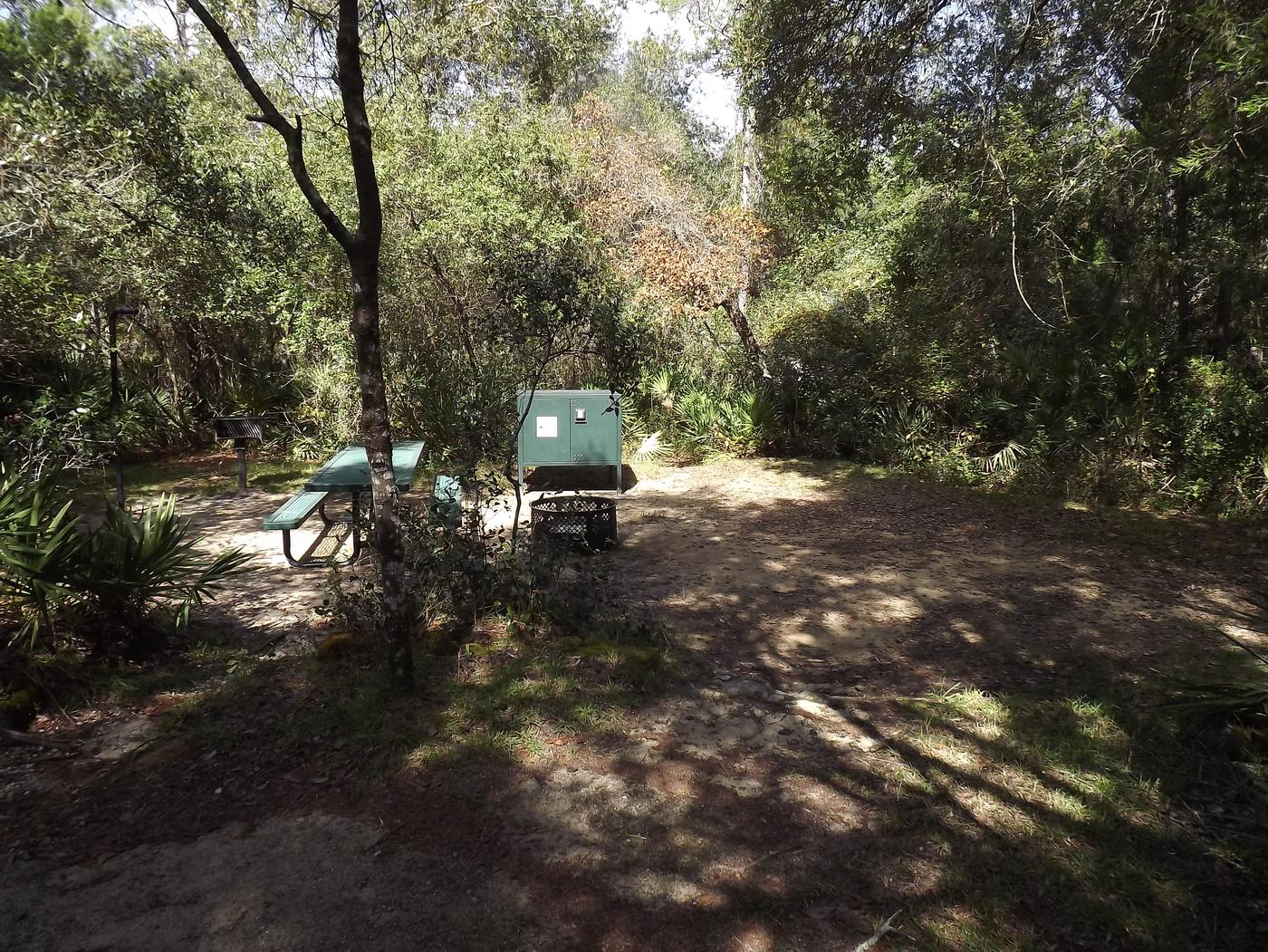 Juniper Springs Recreation Area site #40 tropical setting with picnic area and camping space.