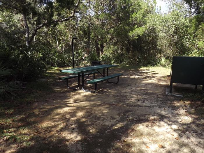 Juniper Springs Recreation Area site #45 tropical setting with picnic area and camping space.