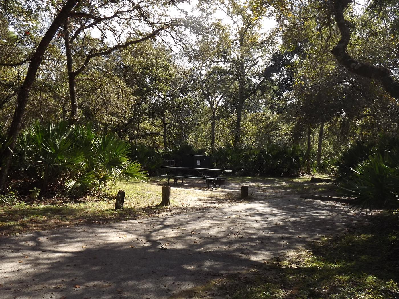 Juniper Springs Recreation Area site #48 tropical setting with picnic area and camping space.