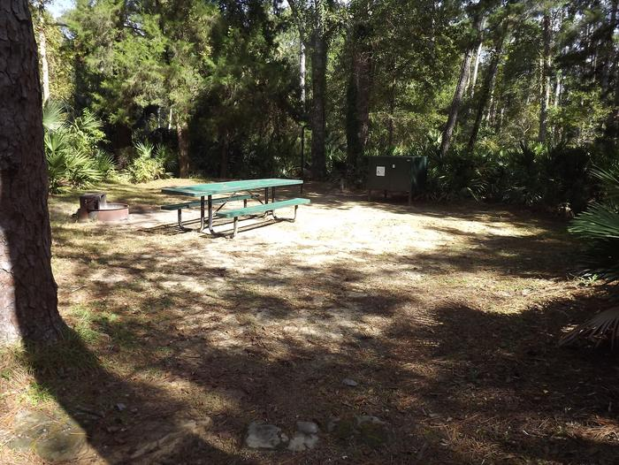 Juniper Springs Recreation Area site #49 tropical setting with picnic area and camping space.