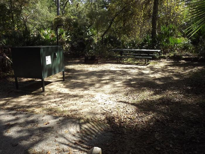 Juniper Springs Recreation Area site #50 tropical setting with picnic area and camping space.