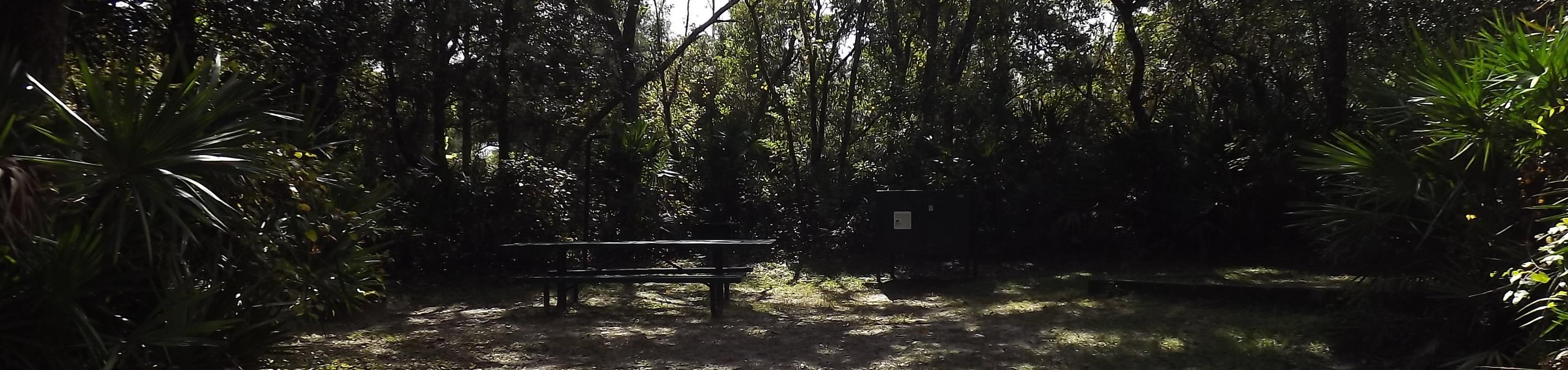 Juniper Springs Recreation Area site #52 tropical setting with picnic area and camping space.