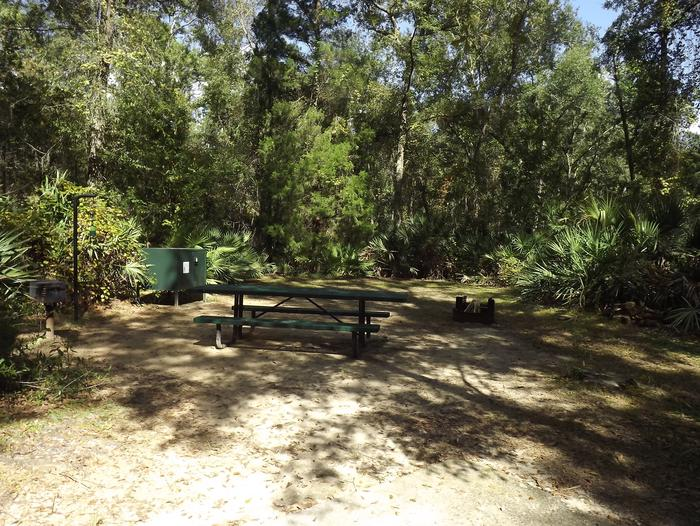 Juniper Springs Recreation Area site #58 tropical setting with picnic area and camping space.