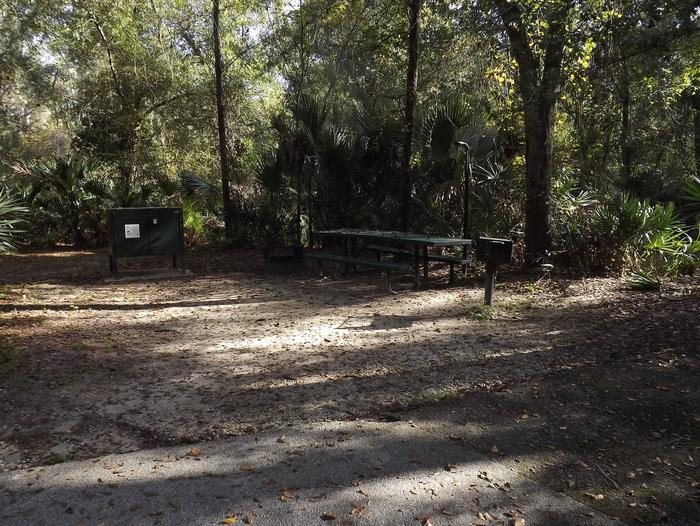 Juniper Springs Recreation Area site #59 tropical setting with picnic area and camping space.