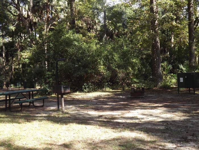 Juniper Springs Recreation Area site #70 tropical setting with picnic area and camping space.