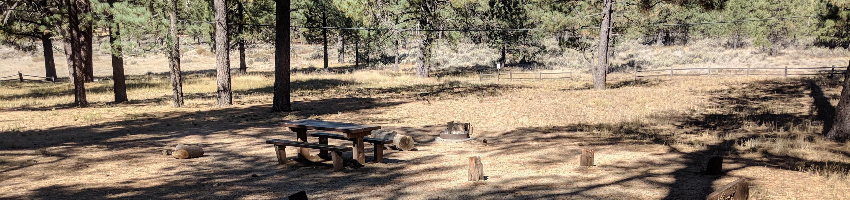 Laguna Campground site #10 wooded camping space view and picnic area.