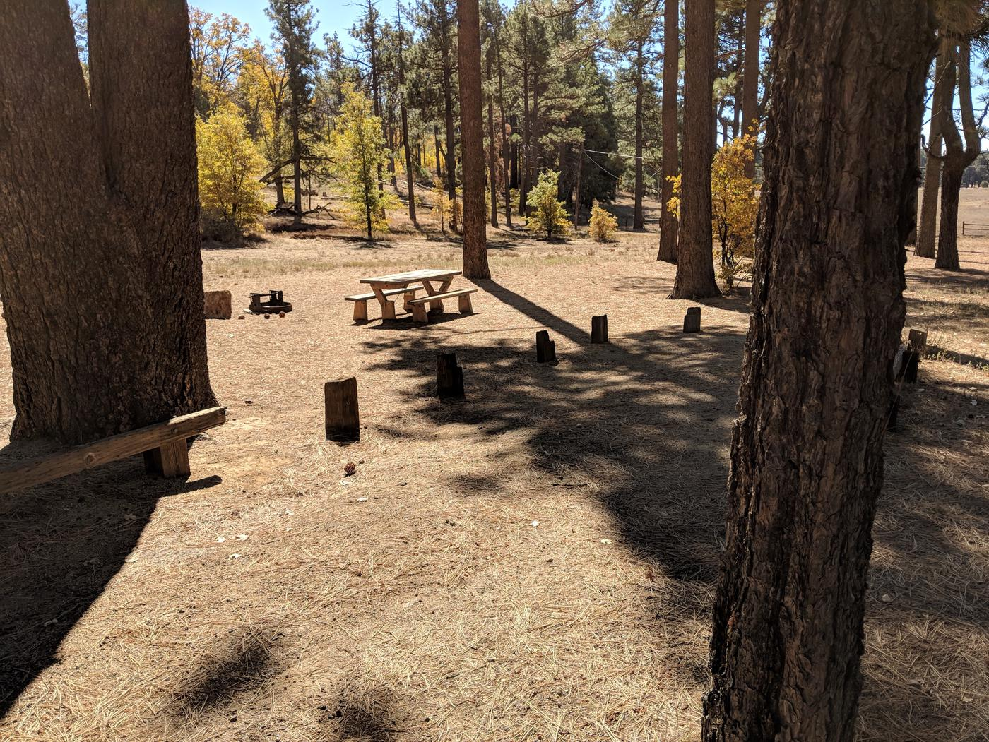 Laguna Campground site #17 wooded camping space view and picnic area.