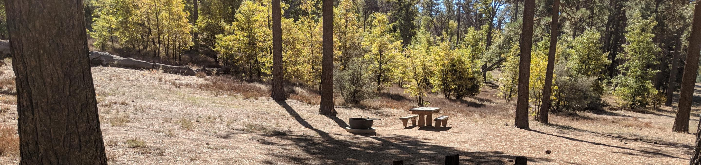 Laguna Campground site #18 wooded camping space view and picnic area.