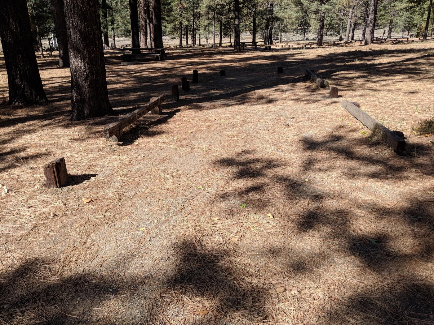 Laguna Campground site #19 wooded camping space view and picnic area.