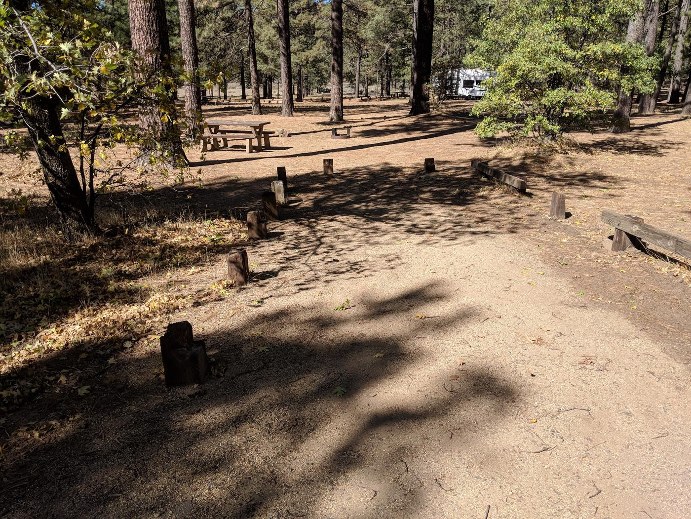 Laguna Campground site #21 wooded camping space view and picnic area.