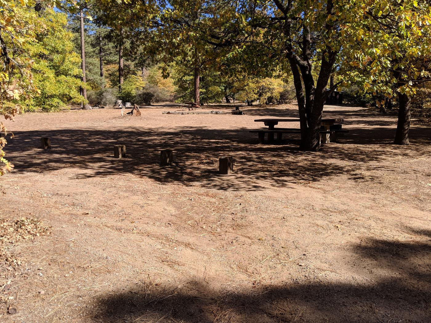 Laguna Campground site #27 wooded camping space view and picnic area.