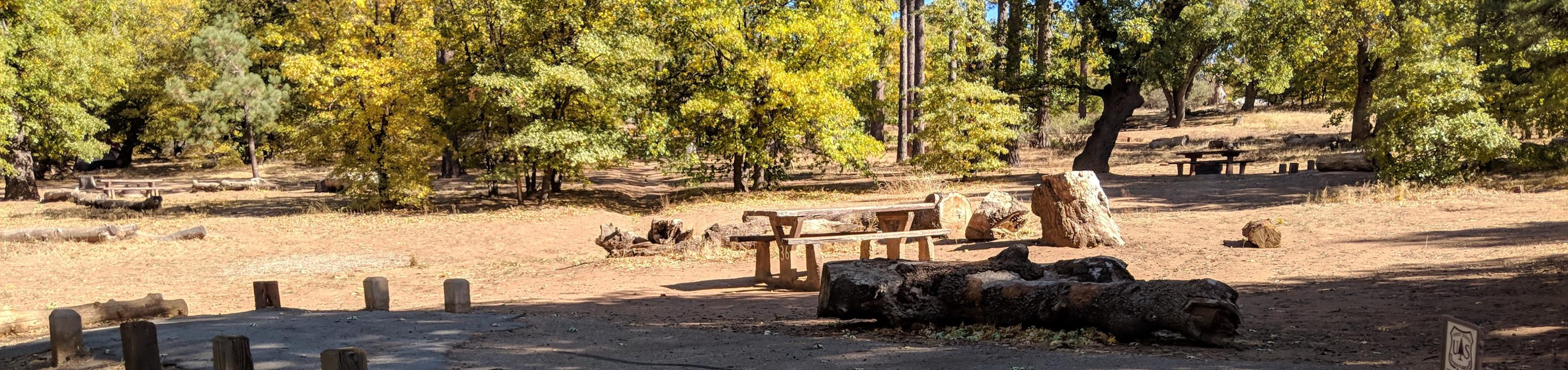 Laguna Campground site #36 wooded camping space view and picnic area.