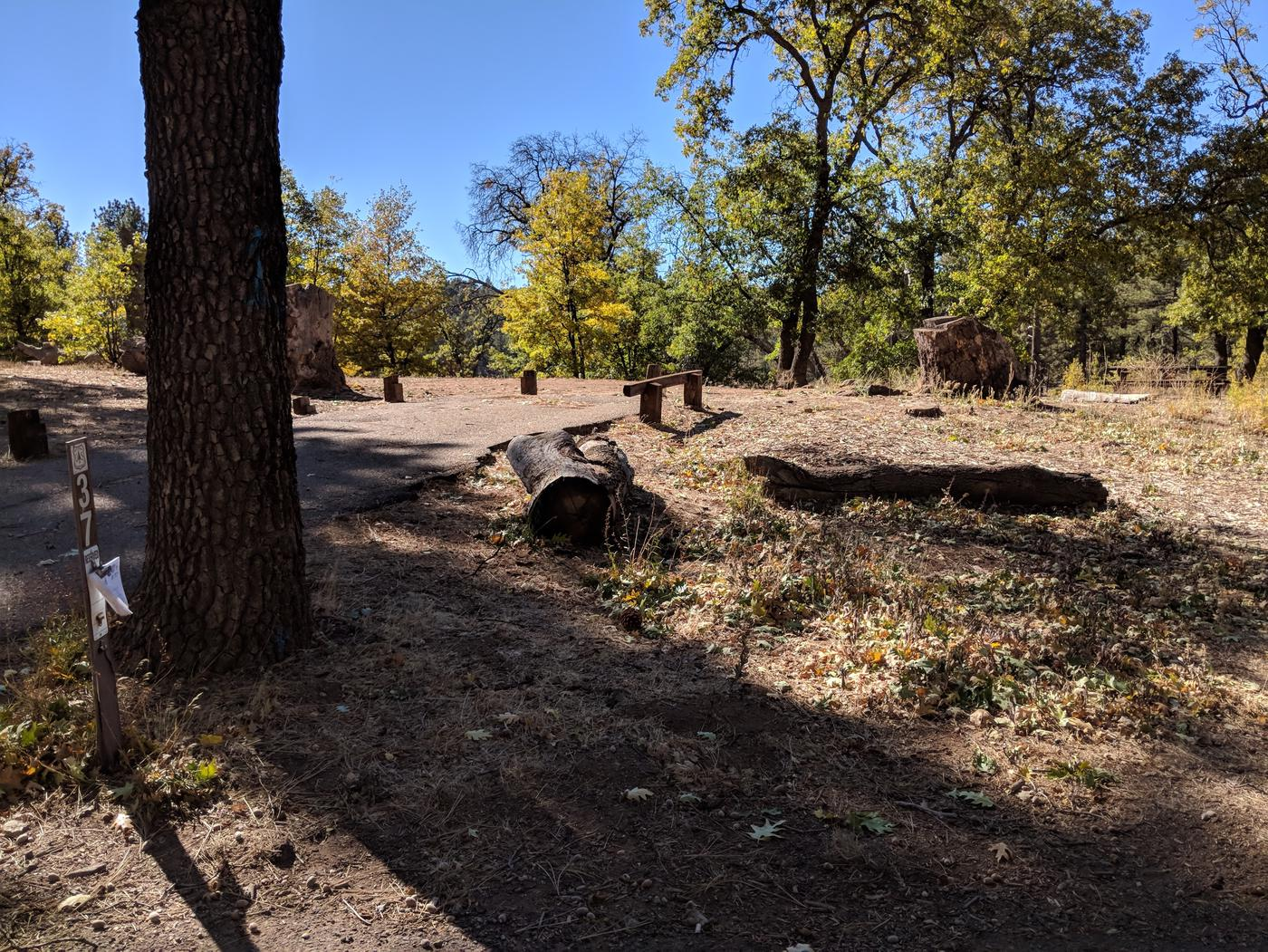 Laguna Campground site #37 wooded camping space view and picnic area.