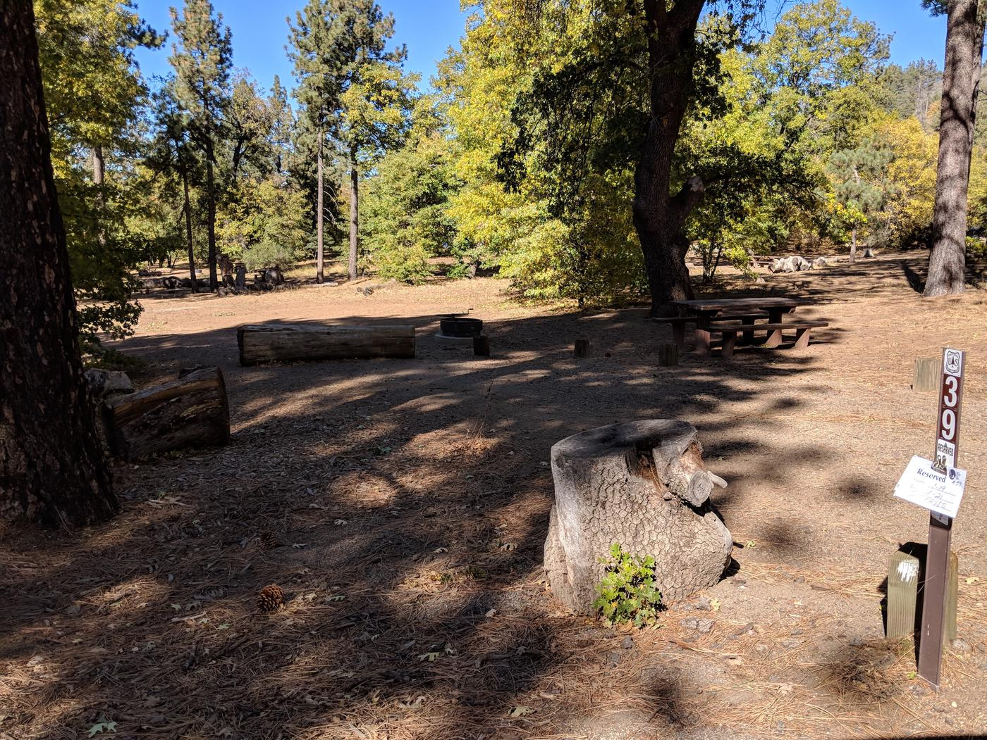 Laguna Campground site #39 wooded camping space view and picnic area.
