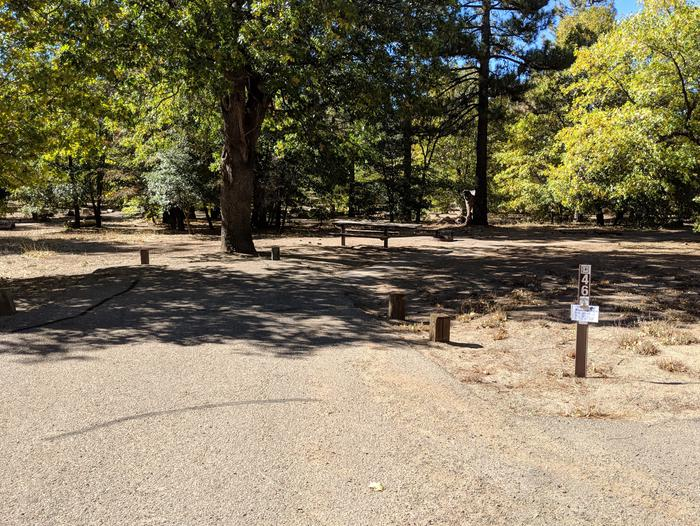 Laguna Campground site #46 wooded camping space view and picnic area.