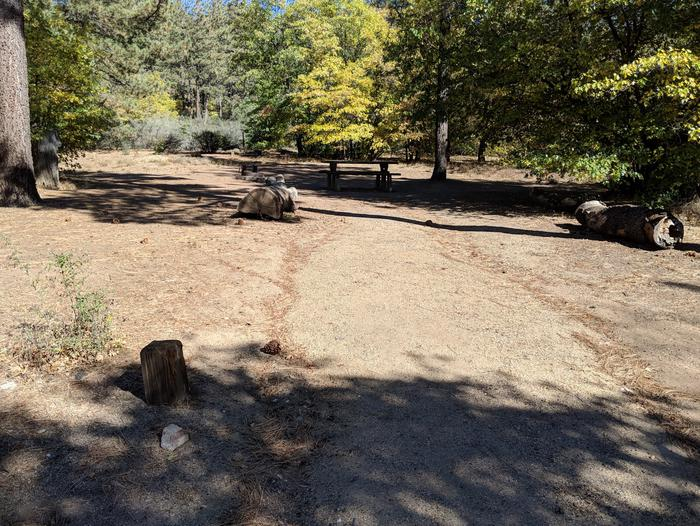 Laguna Campground site #47 wooded camping space view and picnic area.