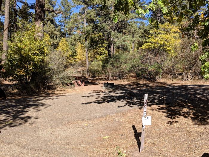 Laguna Campground site #50 wooded camping space view and picnic area.