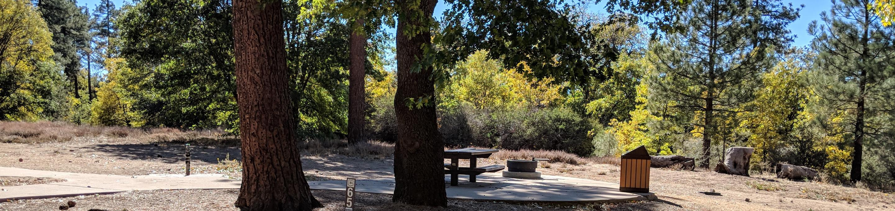 Laguna Campground site #65 wooded camping space view and picnic area.