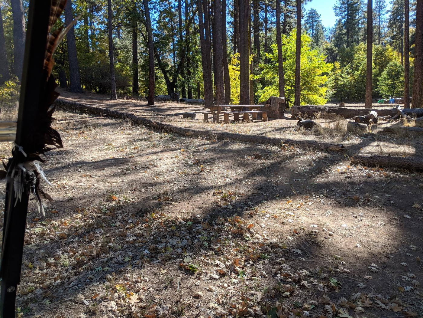 Laguna Campground site #95 wooded camping space view and picnic area.