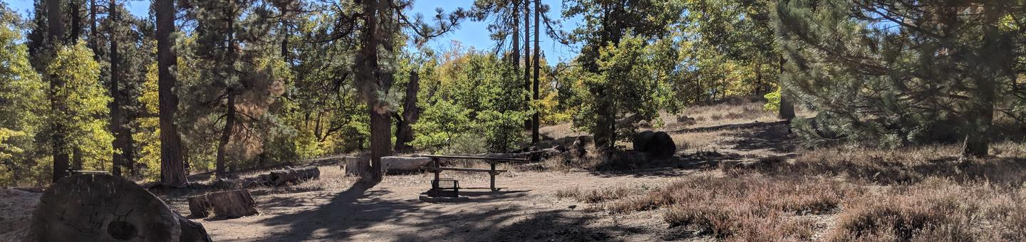 Laguna Campground site #87C wooded camping space view and picnic area.