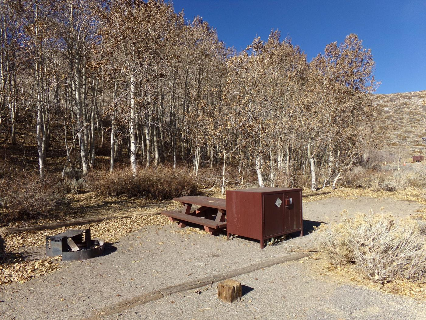 McGee Creek Campground site #23 with full campsite view including picnic area, food storage, and fire pit.
