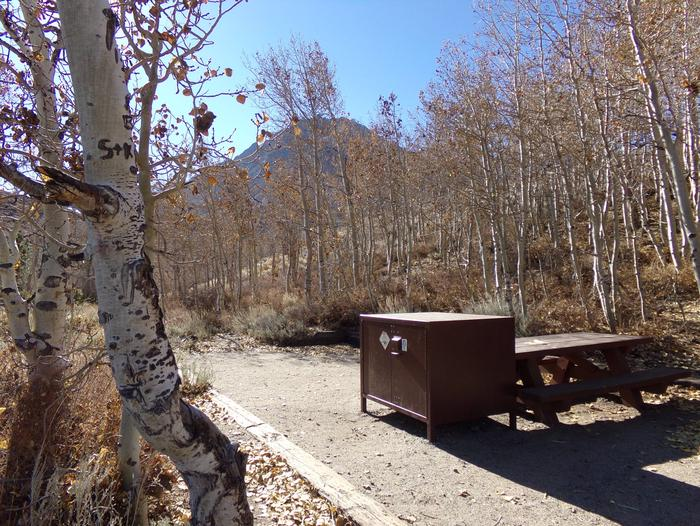 McGee Creek Campground site #24 with full campsite view including picnic area, food storage, and fire pit.