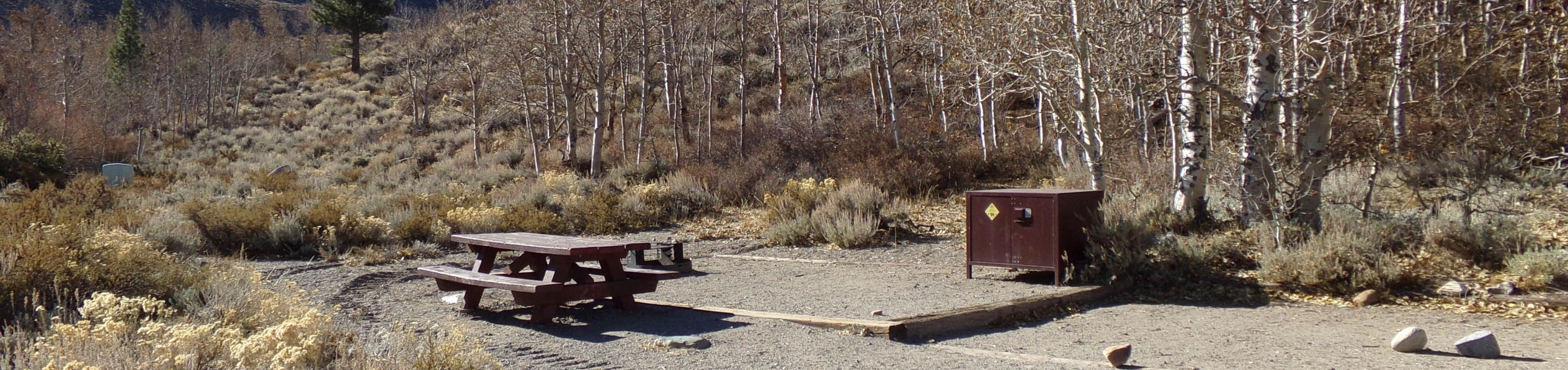 McGee Creek Campground site #25 full campsite view with picnic area, food storage, and fire pit.