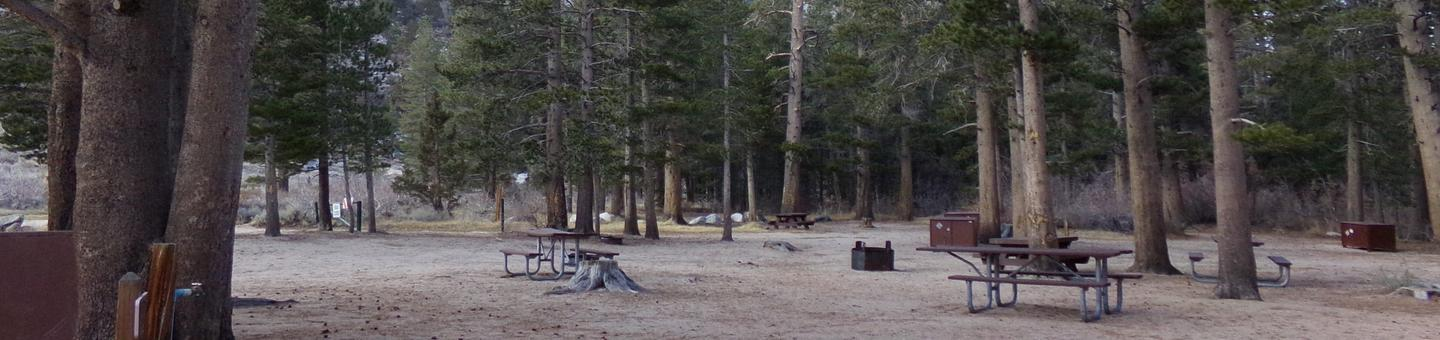 Palisades Group Campground featuring large, wooded picnic and camping area by the creek.