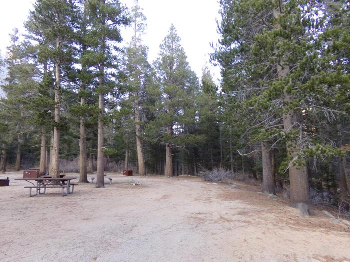 Palisades Group Campground view of camping and picnic area by the creek.