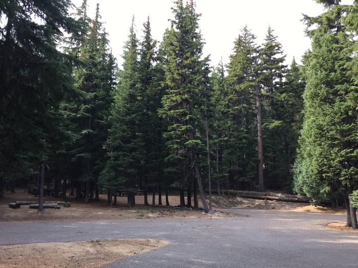 Site ANewberry Group Camp