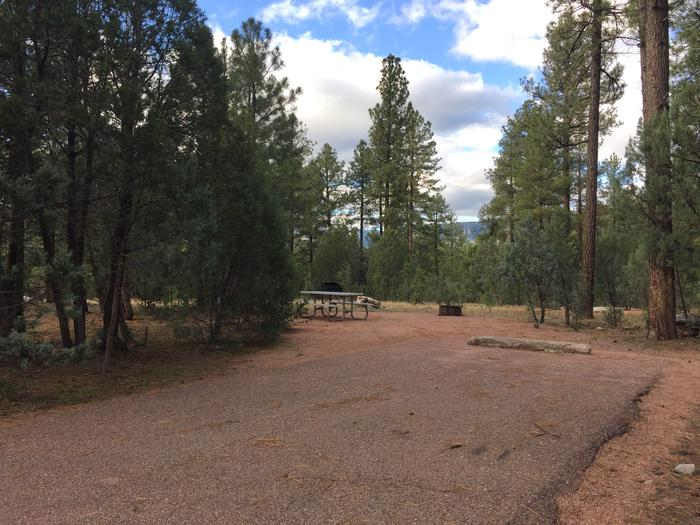Sharp Creek Campground site #08 entrance, parking, and full camp space view among the trees.
