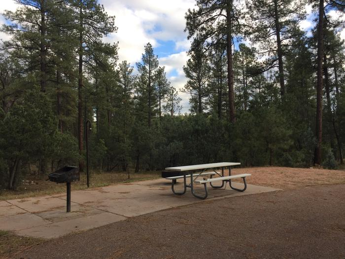 Sharp Creek Campground site #13 featuring the picnic table, grill, and fire pit among the trees.