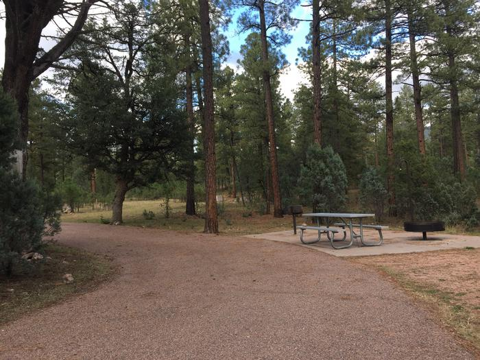 Large, looped parking space and entrance to site #13, Sharp Creek Campground.