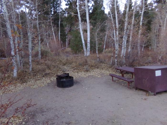 Tuff Campground site #18 featuring picnic area with camping space and fire pit.