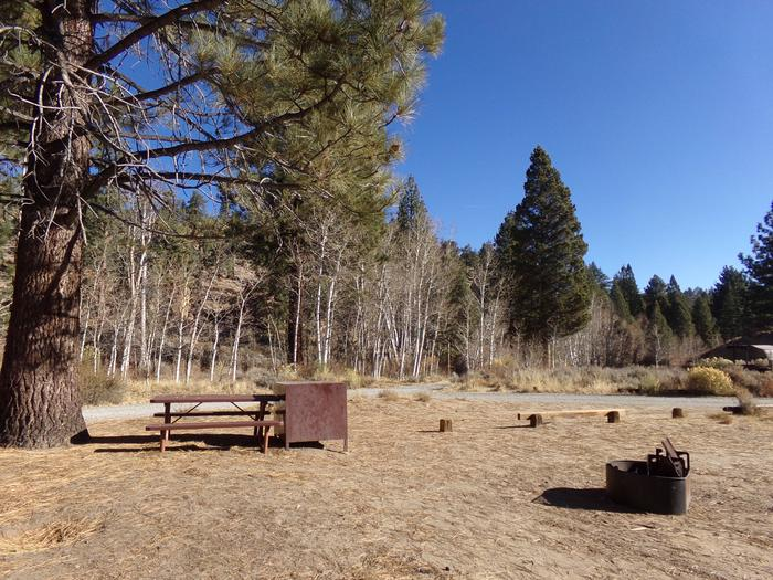 Tuff Campground site #13 featuring picnic area with camping space and fire pit.