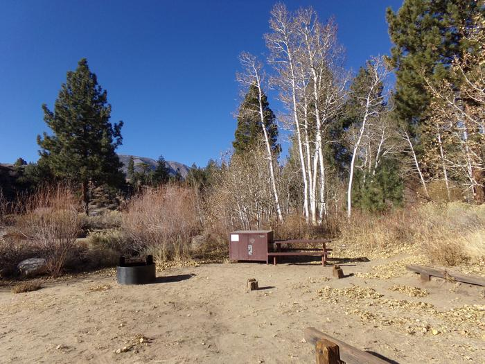 Tuff Campground site #21 featuring picnic area with camping space and fire pit.