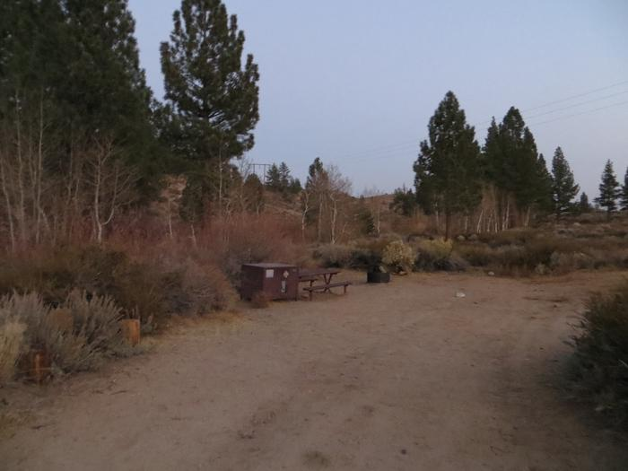 Tuff Campground site #29 featuring the picnic area with camping space and fire pit among the trees.