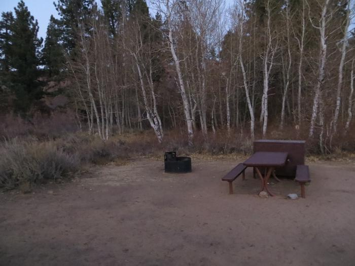 Tuff Campground site #31 featuring the picnic area with camping space and fire pit among the trees.