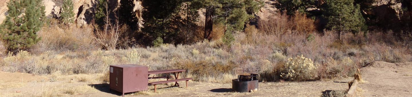 Tuff Campground site #32 featuring the picnic area with camping space and fire pit among the trees.