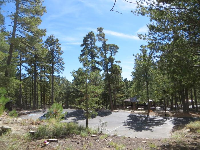 Parking spaces for the large Group Site #01 at Whitetail Campground.