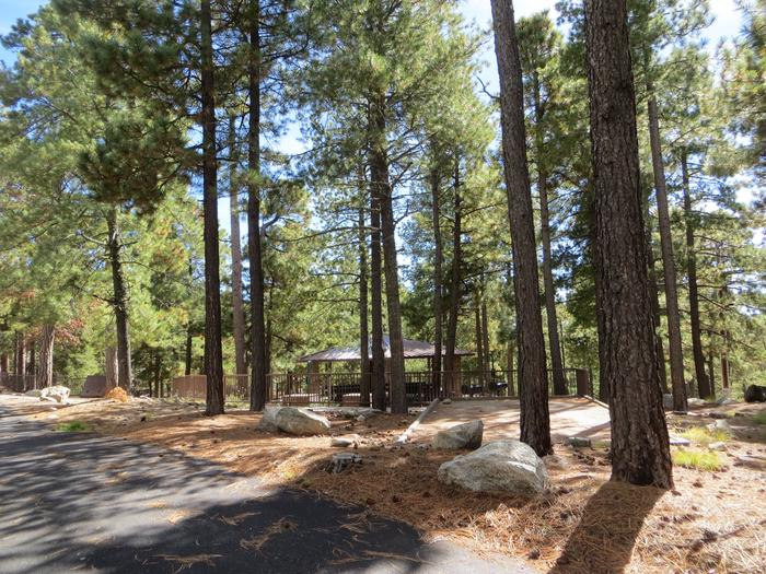 Whitetail Campground Group Site #01 featuring large ramada with multiple picnic tables, camping spaces, and food storage.