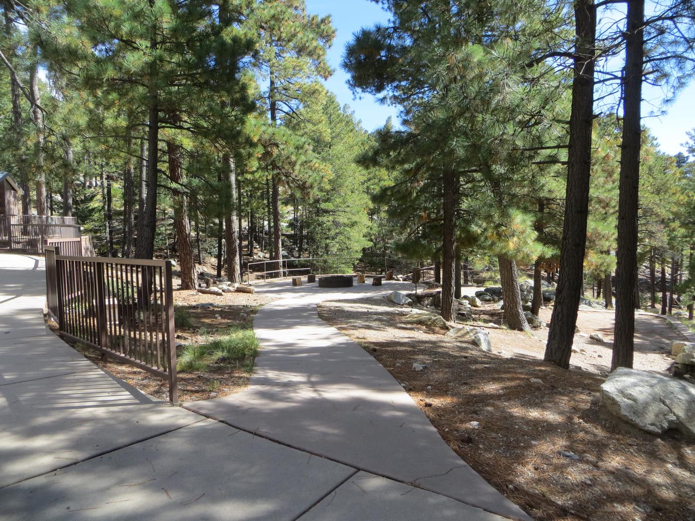 Sidewalk ramp from the parking lot to the large, wooded Group Site #01, Whitetail Campground.