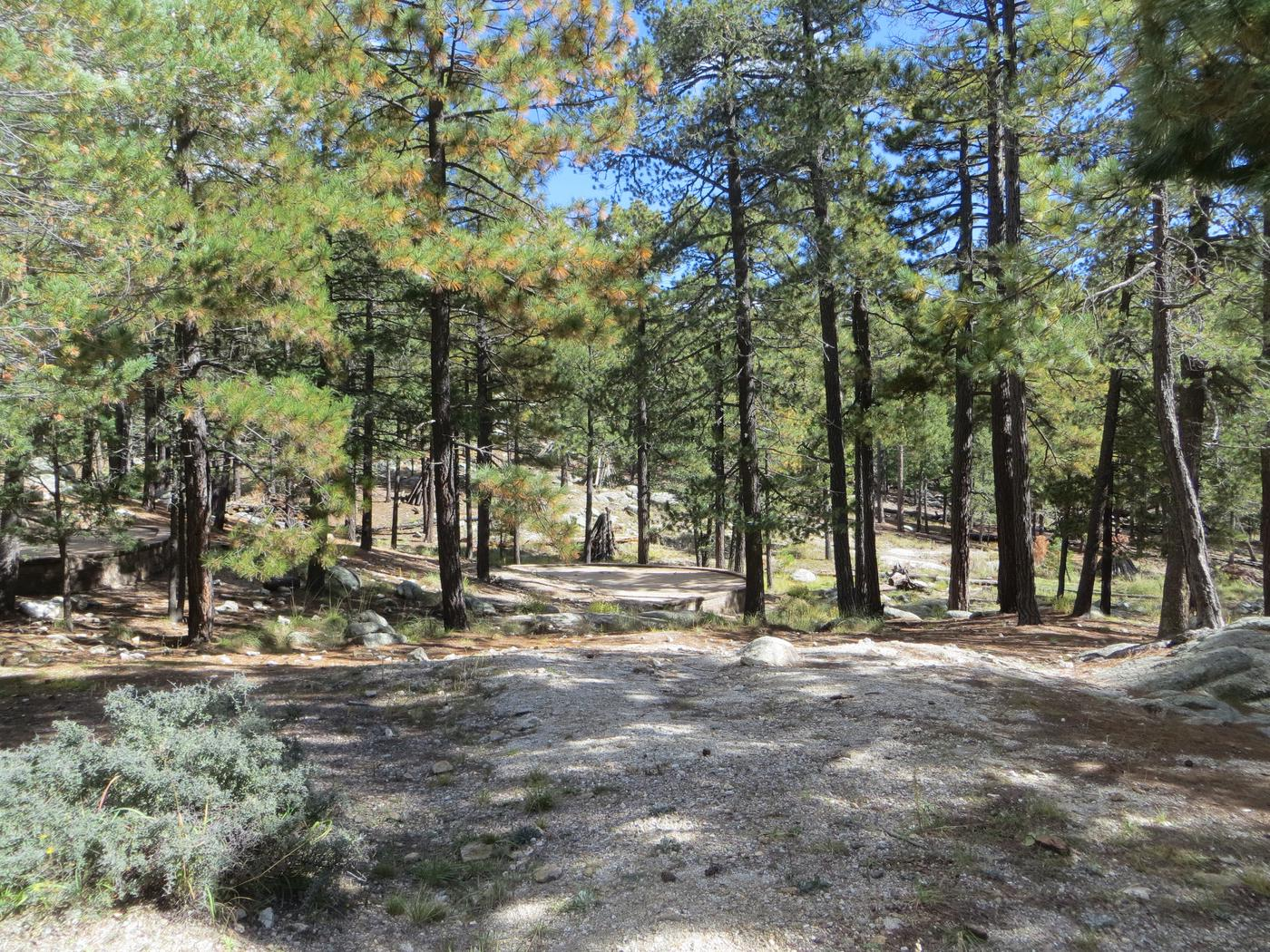 Large camping space locations at Group Site #04, Whitetail Campground.