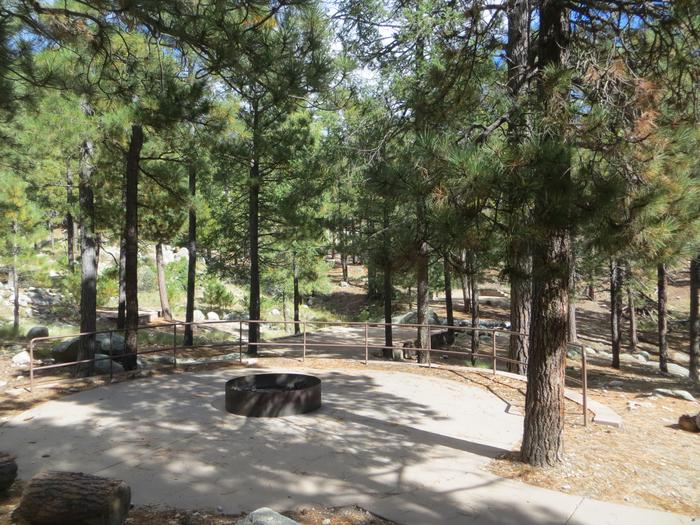 Centrally located scenic fire pit and camping locations at Group Site #04, Whitetail Campground.