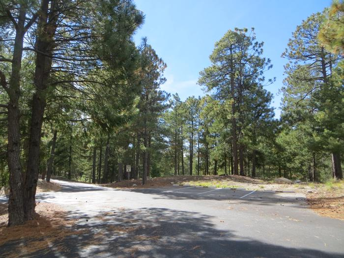 Parking spaces and entrance to the large Group Site #05, Whitetail Campground.